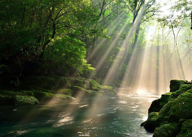 大自然與風景