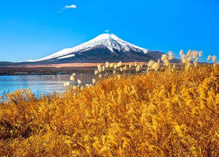 Gunung-ganang di Jepun