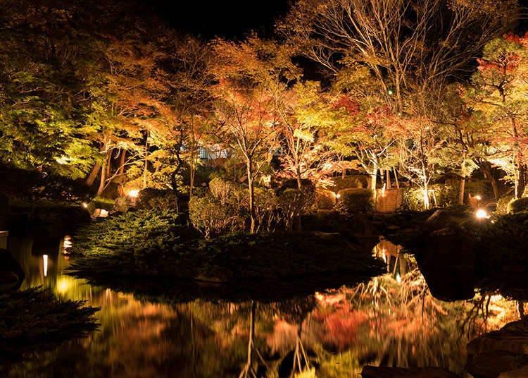 Taman yang diterangi lampu