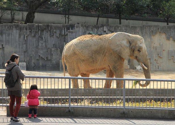 Kebun Binatang dan Akuarium