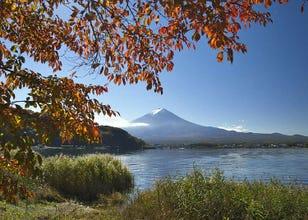 Suasana Empat Musim di Jepang