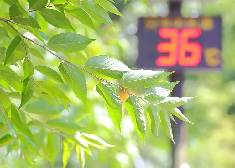 Suhu panas di Jepun pada musim panas