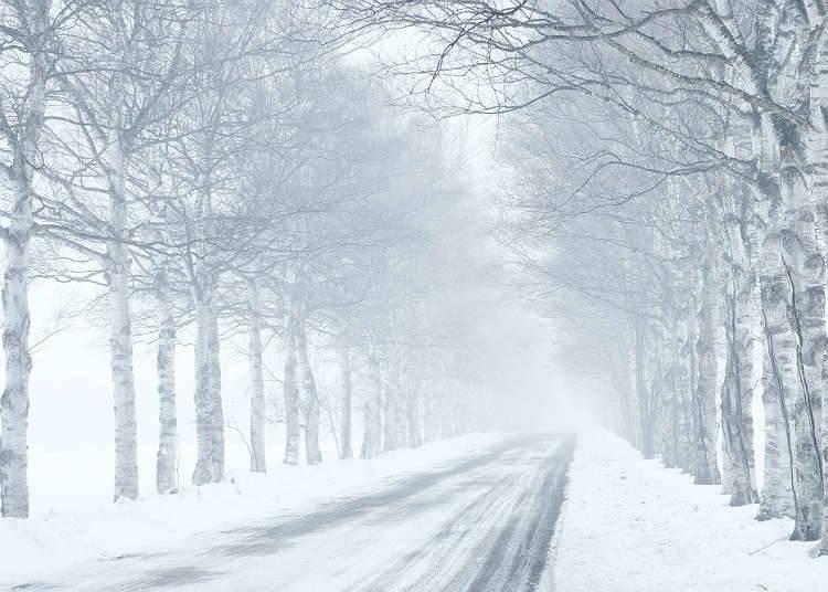 Musim Sejuk