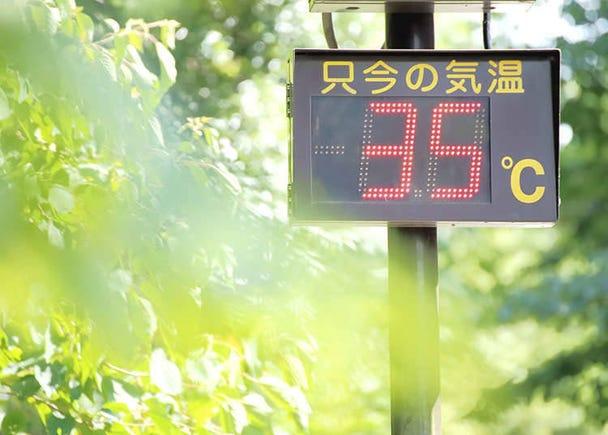 湿度很高的日本夏季