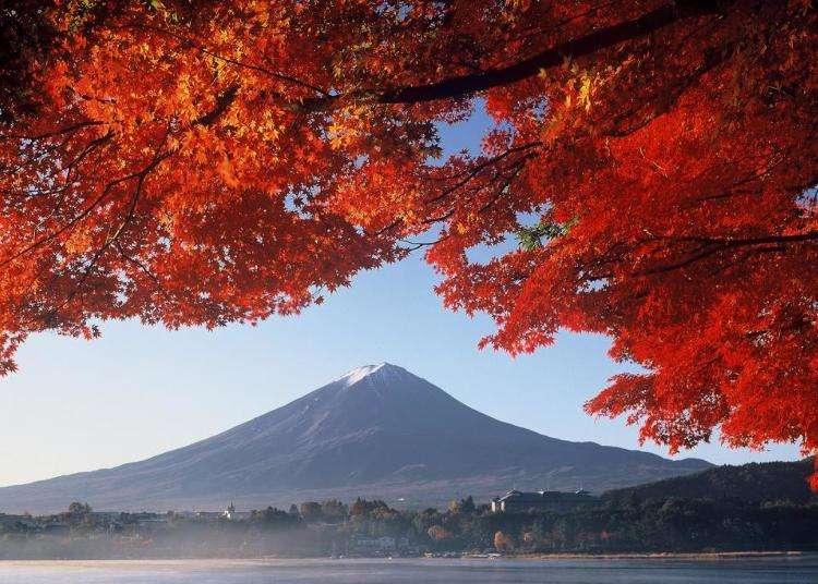 秋 - LIVE JAPAN (日本の旅行・観光・体験ガイド)