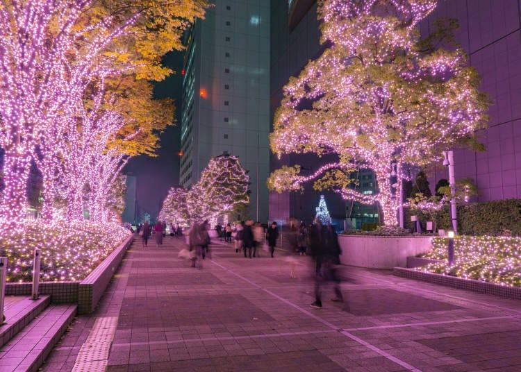 1. See Tokyo's Winter Illuminations