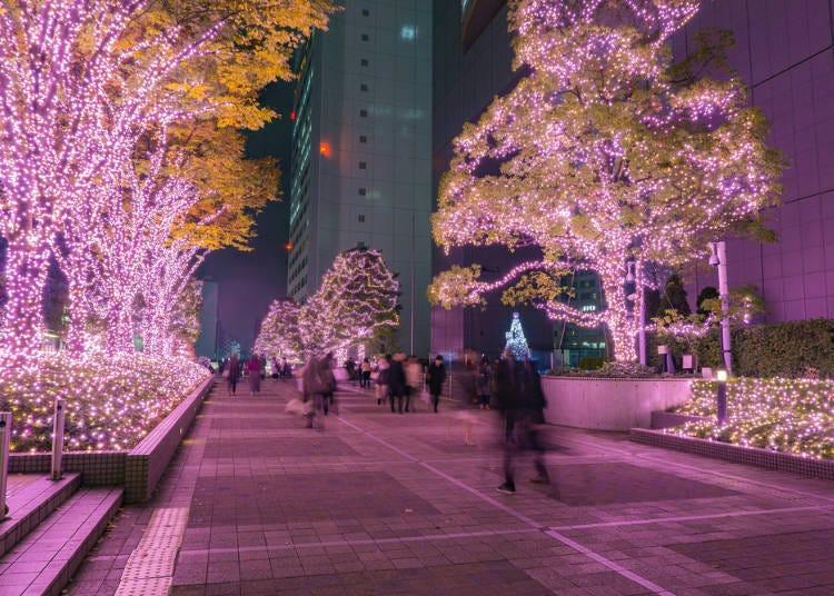 1. 冬日裡東京的霓彩燈飾