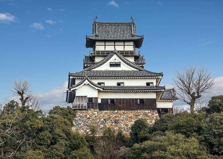 Kastil Inuyama