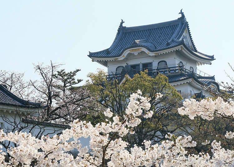 Ciri-ciri istana di Jepun