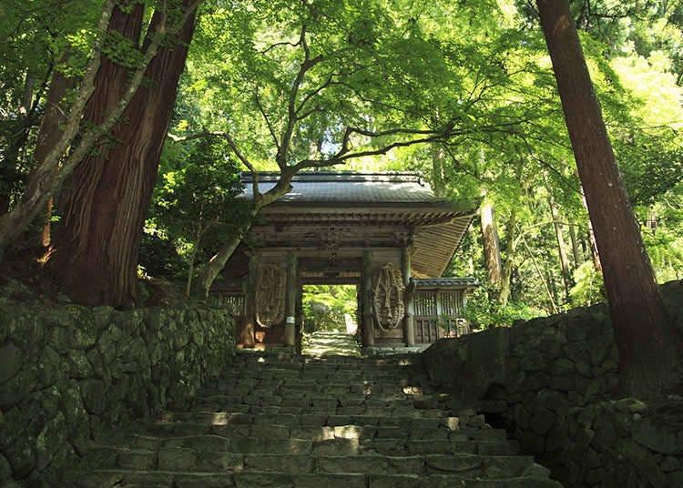 What are Shaji-ato and Kyu-keidai?