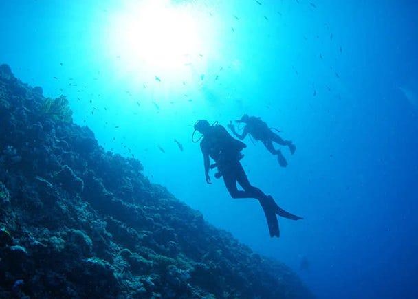 Olahraga Laut