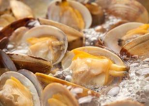 Shellfish cuisine and seafood cuisine