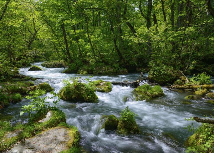 หุบเขา ลำธาร แม่น้ำ และทะเลสาบ