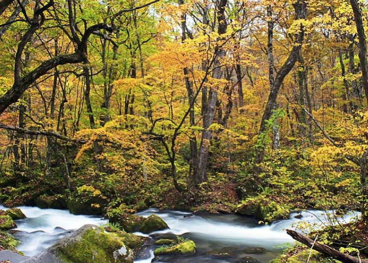 Lembah dan Jeram yang Terkenal di Jepang