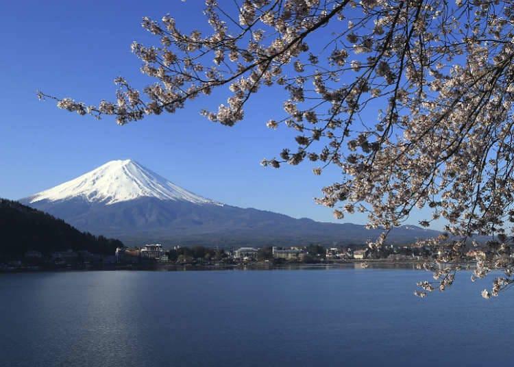日本知名的河川、湖泊