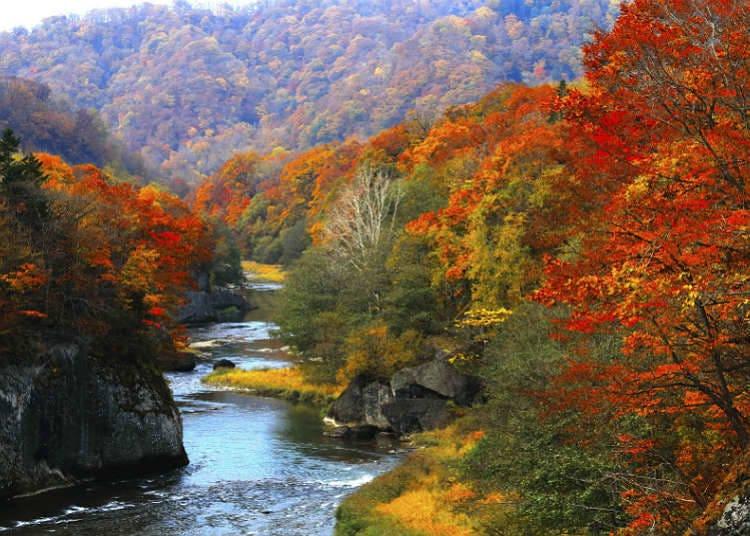 日本的溪谷和溪流