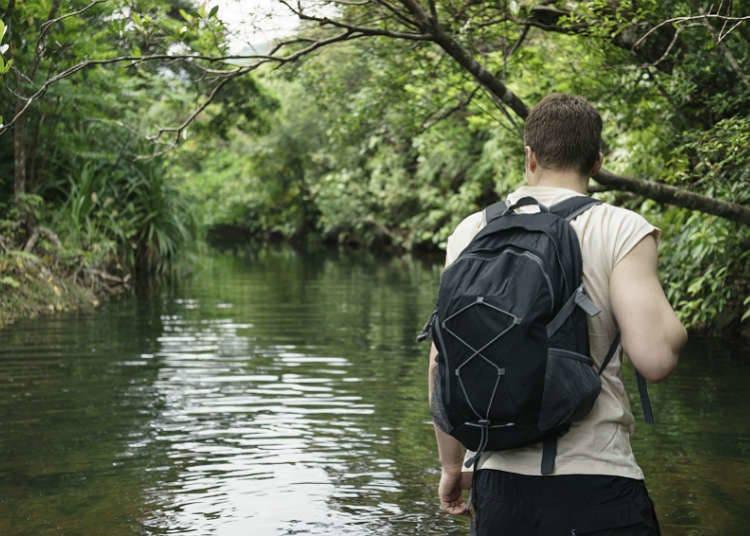溪流及溪谷的玩法