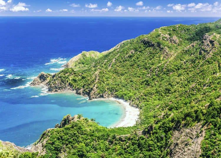 自然遺産の島