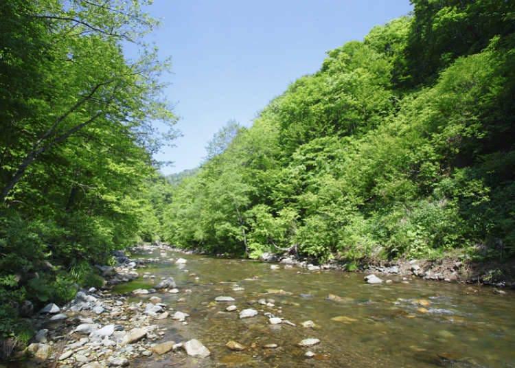 自然遗产的山脉