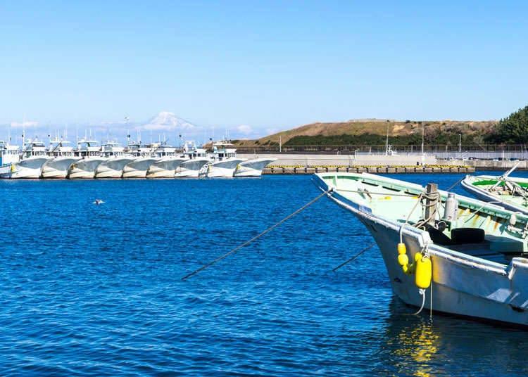 Sukan marin di Jepun