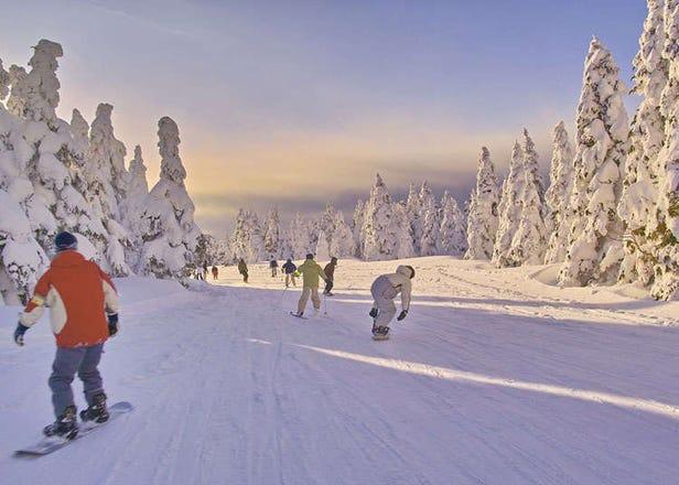 日本冬天的休閒活動:滑雪&各種雪上活動