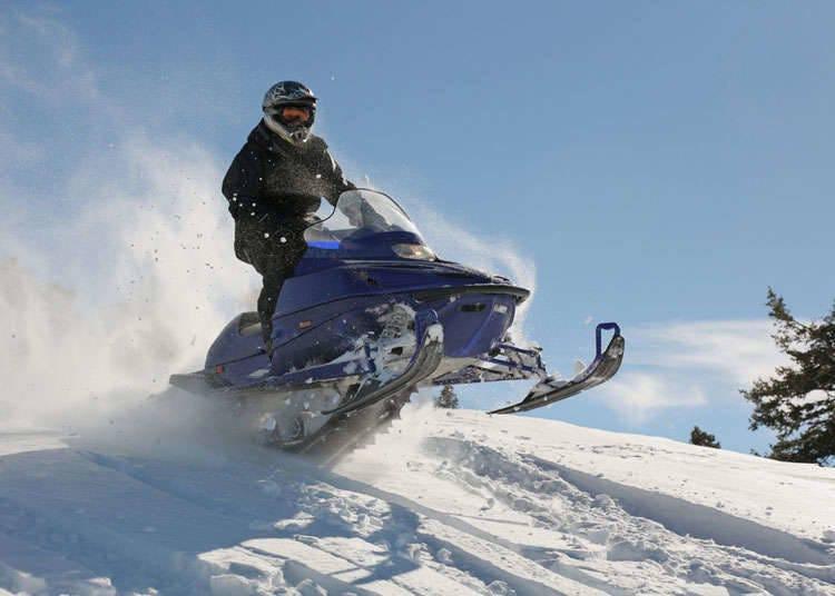 Olahraga Musim Dingin yang Berbeda