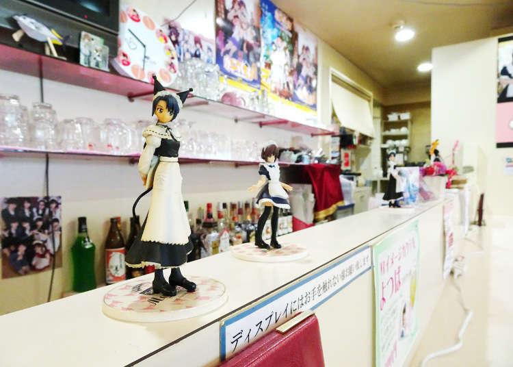 A Cozy Maid Café Outside Akihabara