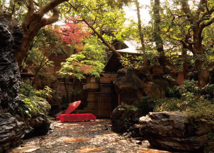 まるで異世界!美しい和室&日本庭園のある名店