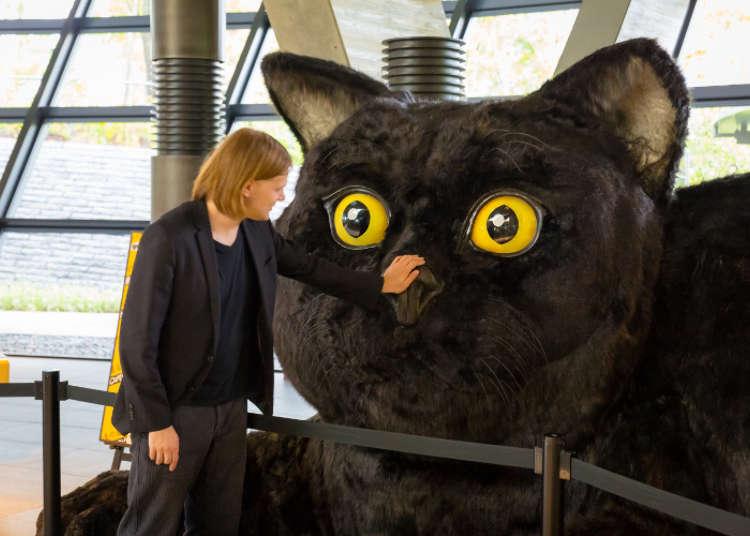 黑貓歡迎您的蒞臨
