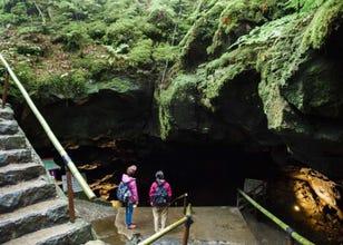富士山秘境之旅!探遊熔岩洞窟與青木原樹海