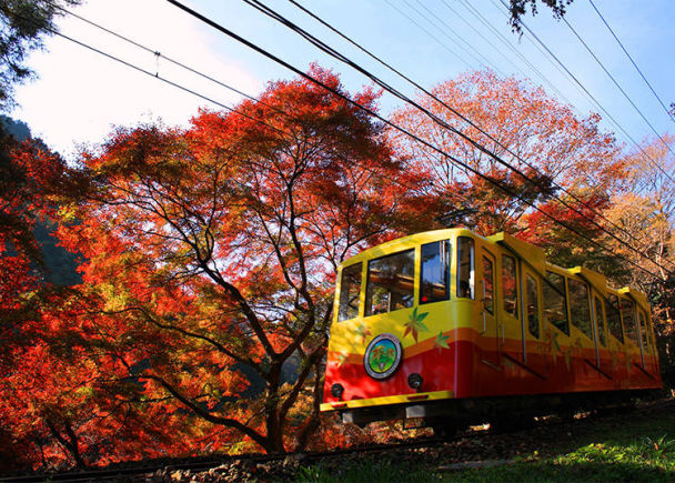 11. Mount Takao: Through a Colorful Tunnel