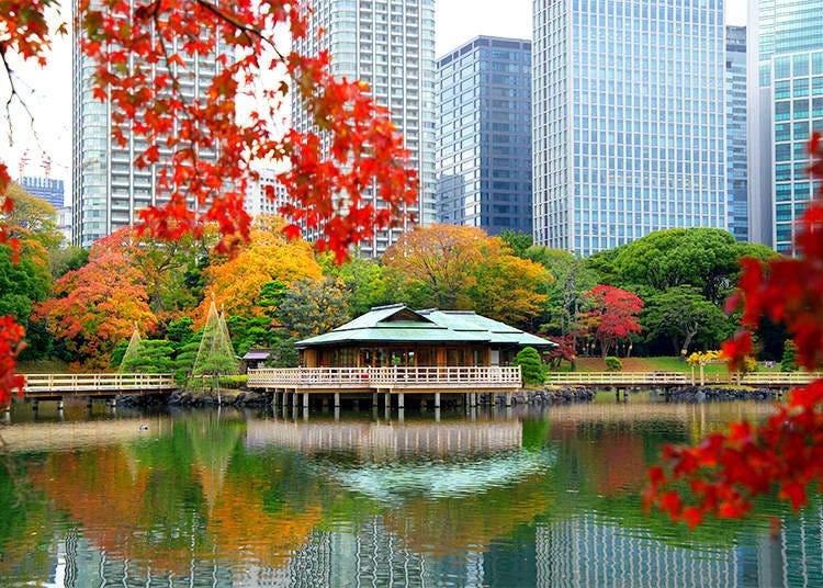 3. Hamarikyu Gardens: Harmony between Nature and High-Rise Buildings