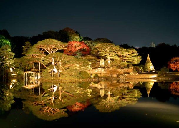 夜晚亮灯也美丽迷人的大名庭园
