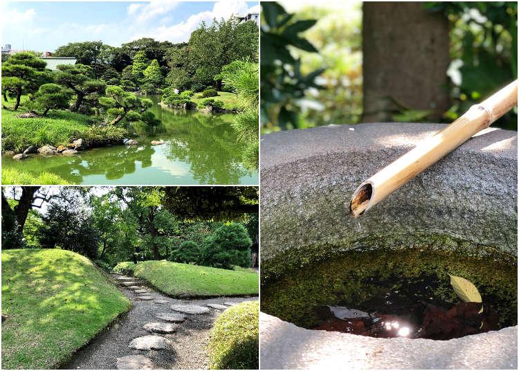 在洋溢着下町风情的 清澄白河 漫步 Live Japan 日本的旅行 旅游 体验