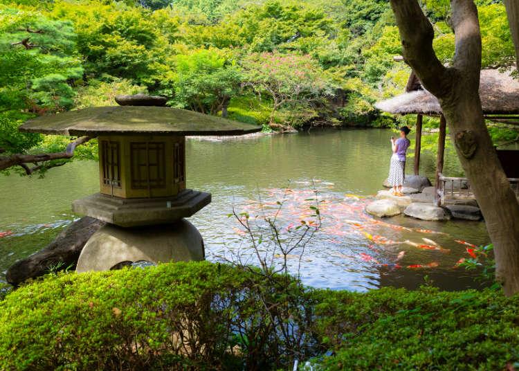 【MOVIE】日本庭園が美しい八芳園