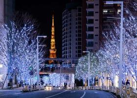 [2020년 최신]겨울밤을 수놓는 도쿄의 인기 일루미네이션 15곳