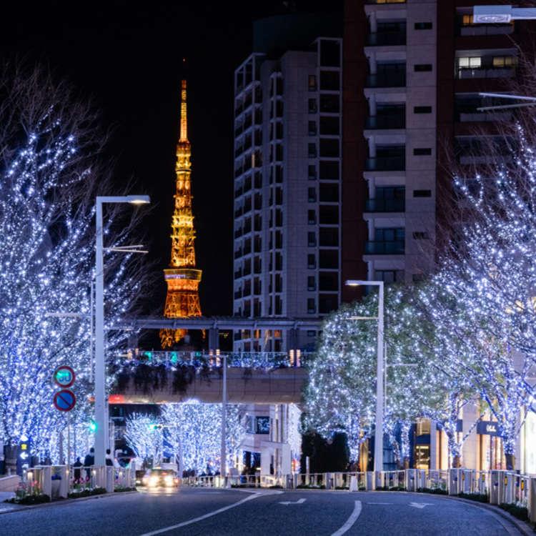 Holiday Magic: Tokyo's Best 20 Winter Illuminations (2019)