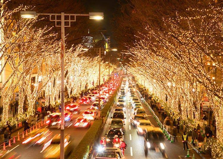 12. 느티나무 가로수길이 약 90만 개의 전구로 환하게 빛나는 '오모테산도 일루미네이션'(2020년 중지)