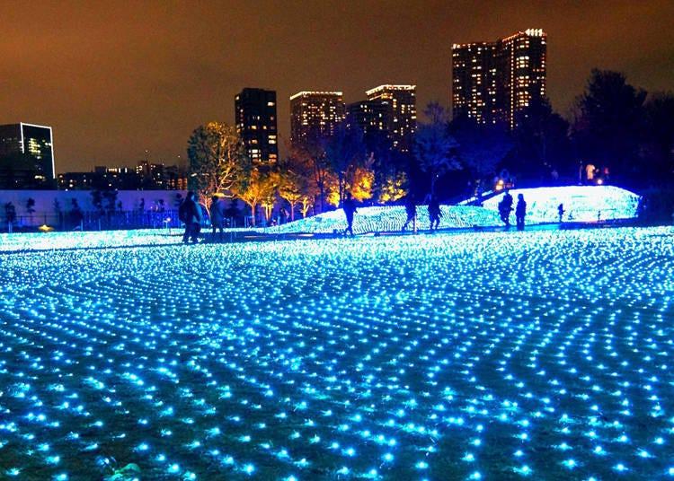 15. 도쿄 타워를 배경으로 신비로운 푸른 빛을 발하는 일루미네이션 '시나가와 시즌 테라스 일루미네이션' (2020년 중지)