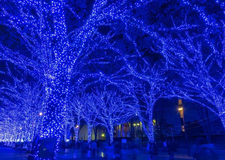 13. 일본 각지에서 인기를 끈 일루미네이션 '푸른 동굴 SHIBUYA'(2020년 중지)