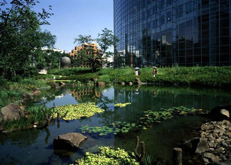 สวนพักผ่อนหย่อนใจต้นตำรับสวนซามูไรสมัยเอโดะ