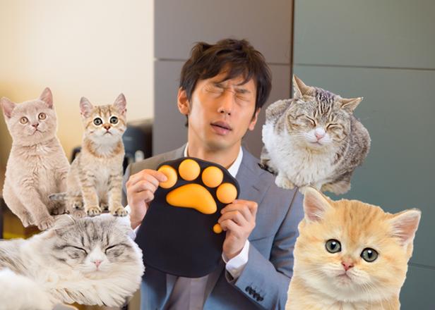 日本の猫好きは凄すぎ!猫のおでこの香りに包まれたりと、猫グッズまみれで1日を過ごすと最高に癒された