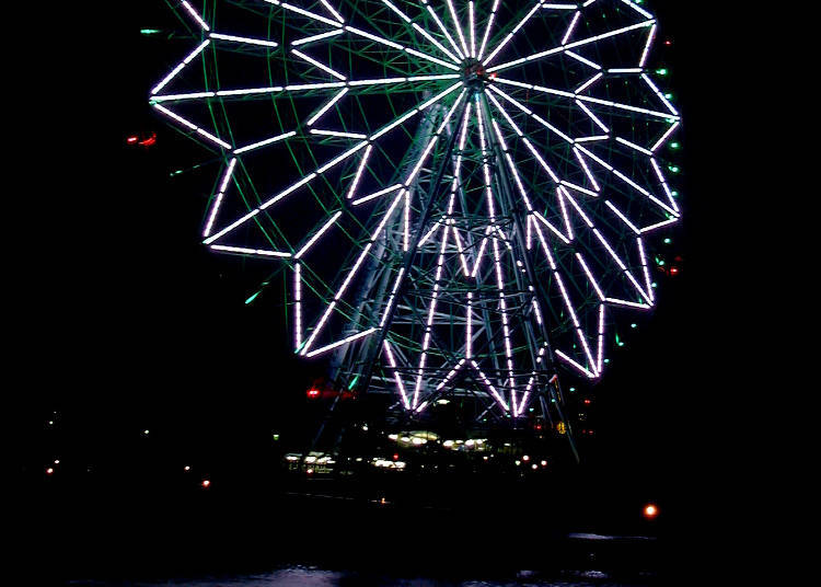 The New Year's Countdown at Kasai Rinkai Park