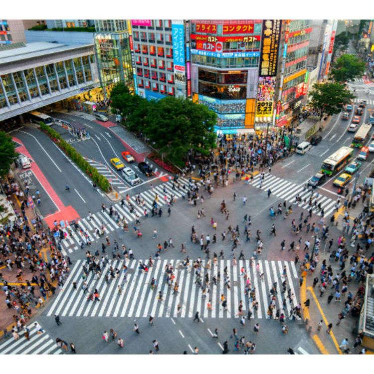【東京自由行】澀谷十字路口、忠犬八公之外哪裡去?澀谷周邊景點懶人包