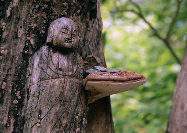 Sejarah agama Buddha di Jepun