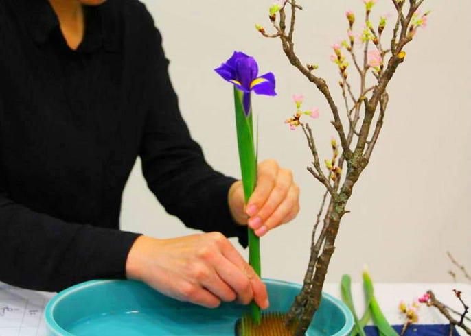 Learn The Art Of Flower Arrangement At Ohara School Of Ikebana Live Japan Travel Guide