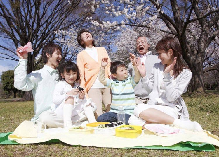 Enjoying Japanese cherry blossom festivals: Hanami Parties!
