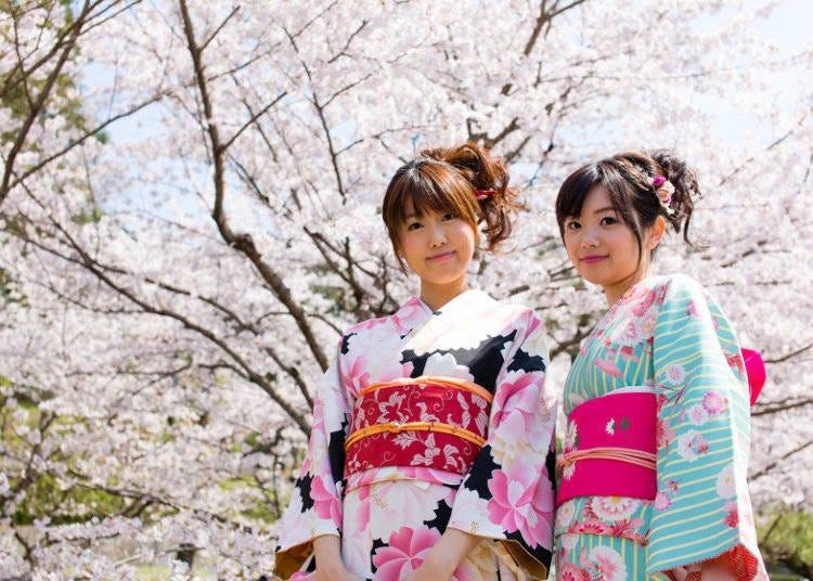 在日本賞櫻的準備