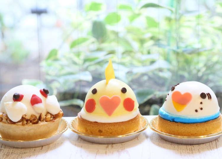 Kotori Café – Little Birds and Delicious Desserts
