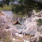 Enjoy Sagano Scenic Rail, Hozugawa River Boat & Arashiyama